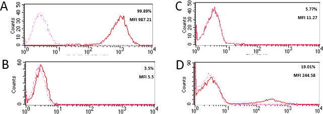 Validation studies of a CD19 monoclonal antibody LT19 with flow cytometry