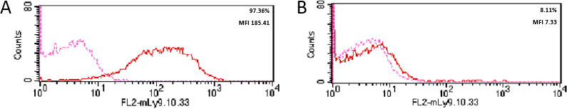 Validation studies of the anti-CD19 monoclonal antibody (clone LT19) by flow cytometry