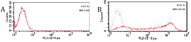 Validation studies of a CD229 monoclonal antibody with flow cytometry