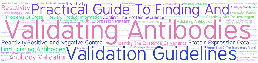Cloud words: antibody valitation, practical guide...