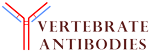 Vertebrate Antibodies Limited (VAL)